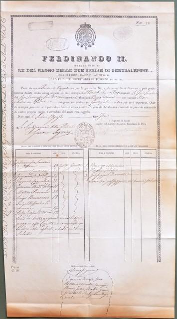 NAVIGAZIONE '– REGNO DI NAPOLI. Permesso di navigazione e fede di sanità. Interessante documento (di cm 27x49) a stampa e completato a mano, bollato e firmato dalle autorità competenti.