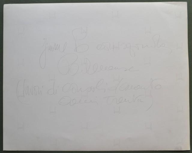 FIUME PO. Parma. Fotografia (cm 29,5x23,5) dello Studio Pisseri di Parma. A retro didascalia a lapis, Fiume Po con sponda Parmense