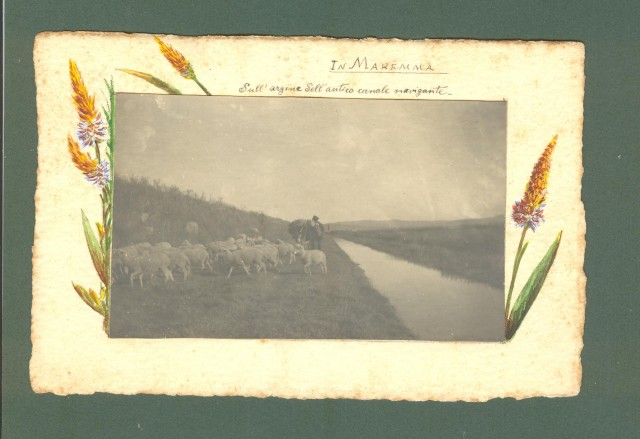 TOSCANA. Maremma. Sull'argine dell'Antico canale navigante. Foto d'epoca, anno 1909.