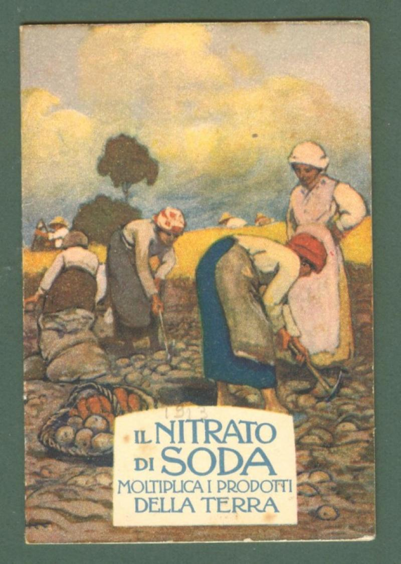 CALENDARIETTO ANNO 1913. NITRATO DI SODA.