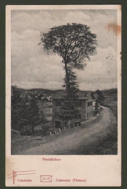 Toscana. PRATALLOLMO, Consuma (Firenze). Cartolina d'epoca viaggiata nel 1908
