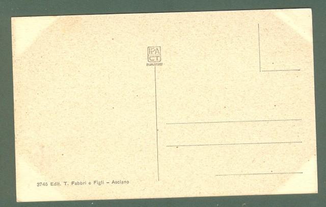 Toscana. ASCIANO, Siena. Fontana in Piazza del Grano. Cartolina d'epoca non viaggiata