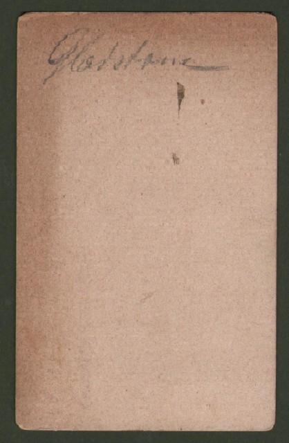 Gladstone William Ewart  (1809 '– 1898). Celebre politico inglese, quattro volte primo ministro del Regno Unito.
