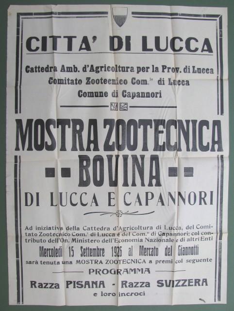 Mostra zootecnica e bovina di Lucca e Capannori